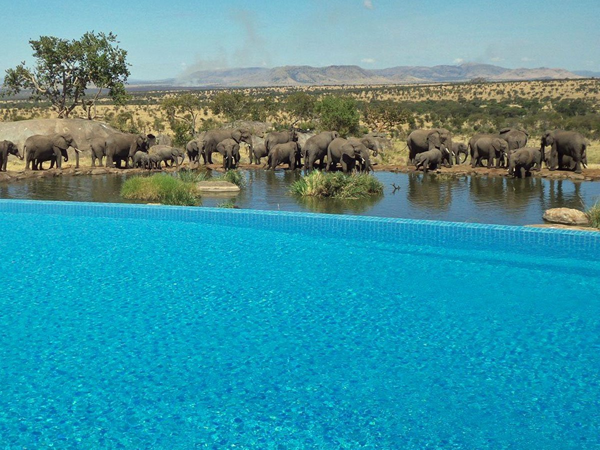 10 Swimming Pools You Should Have On Your Bucket List